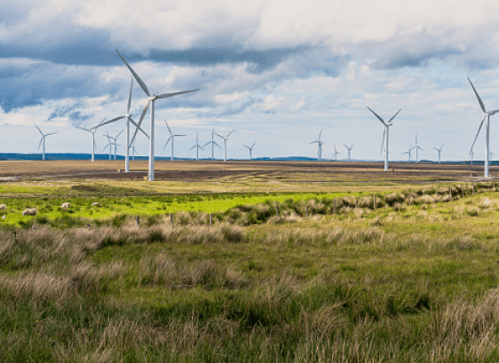 100% renewable electricity purchased since 2012